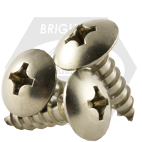 """#10-12x5/8"""",(FT) SELF-TAPPING SCREWS PHILIPS TRUSS HEAD TYPE A STAIN A2 18-8"""