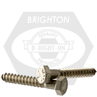 "3/8""-7x6"" STAINLESS STEEL 316 HEX LAG SCREW"